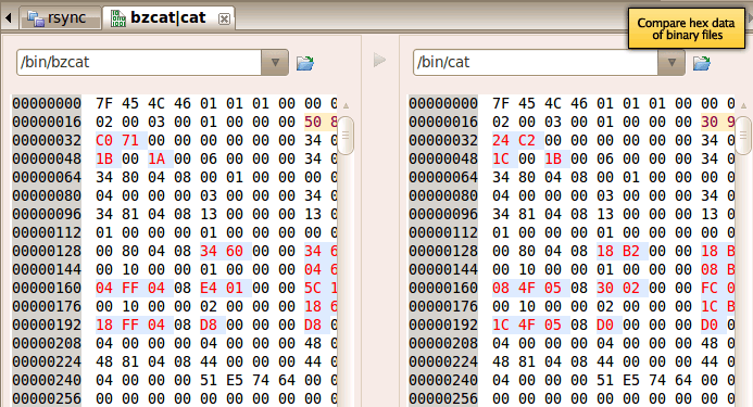 Screenshot of binary compare